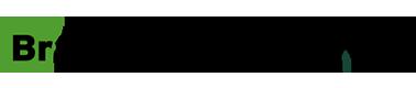 Brampton_logo